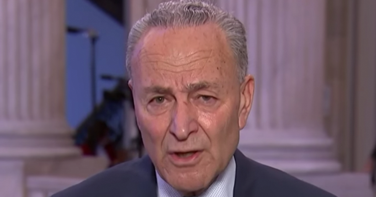 Dozens of Conservative leaders sign open letter calling for Schumer censure